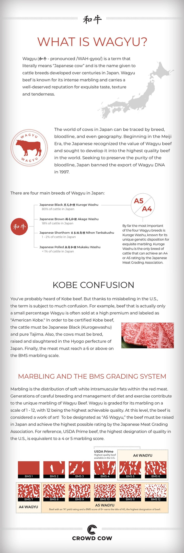 Updated-Wagyu-Infographic-6.12.20-cropped