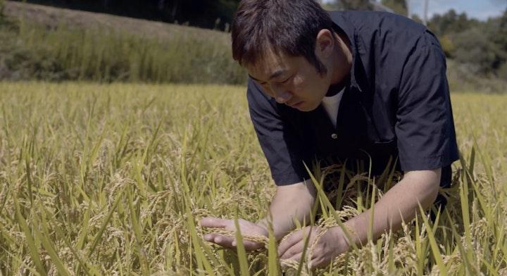 Iwate Rice Straw