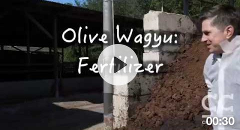Olive Wagyu Fertilizer