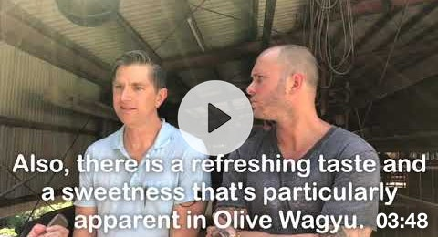 Olive Wagyu Television Interview (w/ Michelin-star Chef Mike Bagale)