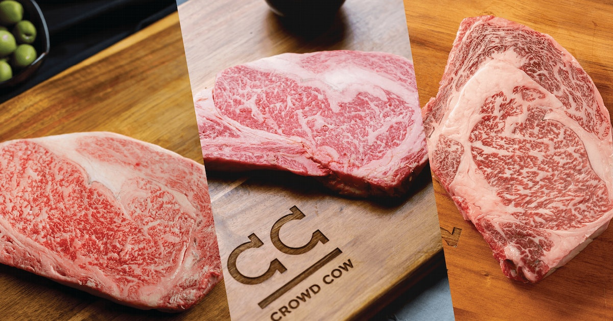 comparing a5 a4 a3 olive wagyu